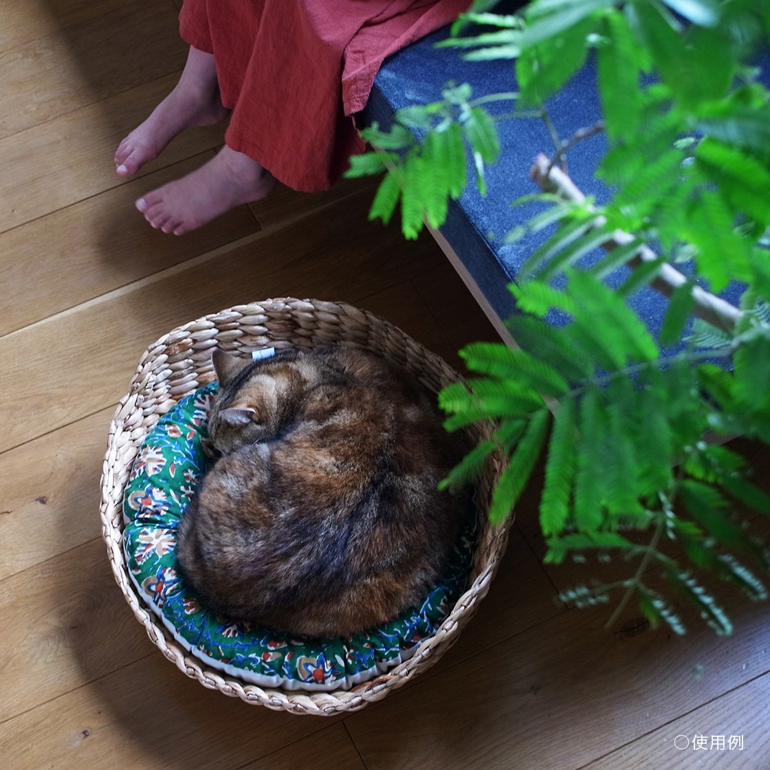 OZABUクッション-Lサイズ【ウスカーキ×ウスベージュ】 /For Cat