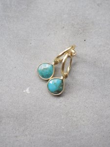 Turquoise Earrings/marron