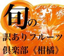 送料無料 旬の訳ありフルーツ倶楽部 柑橘コース【年6回】