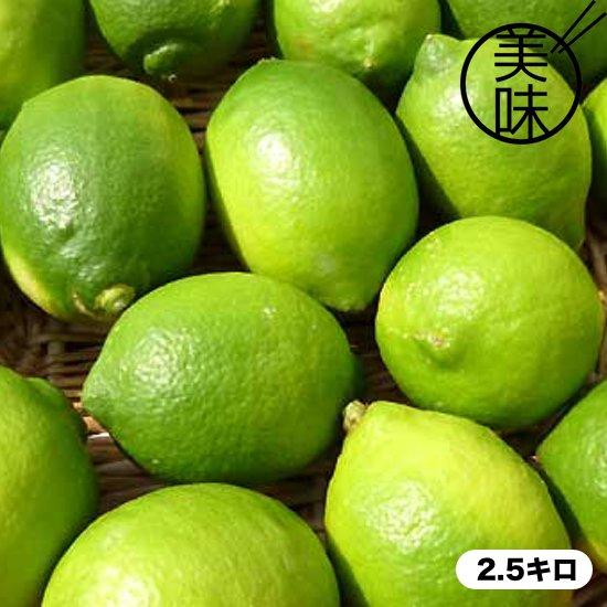 《送料別》熊本産 食べるレモン 2.5キロ