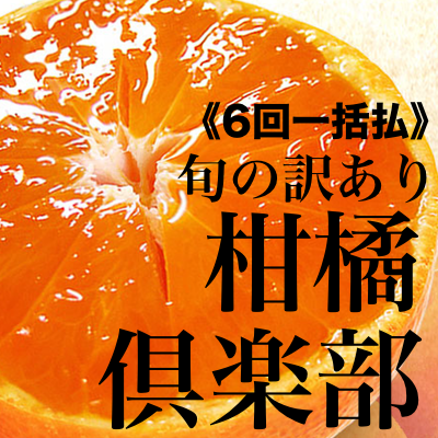 <img class='new_mark_img1' src='//img.shop-pro.jp/img/new/icons15.gif' style='border:none;display:inline;margin:0px;padding:0px;width:auto;' />《送料無料》旬の訳あり柑橘倶楽部【年6回一括払】