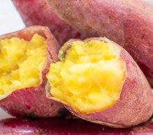 【送料無料・11月下旬出荷開始予約】熊本産 蜜芋 完熟熟成 紅はるか 5キロ