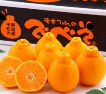 九州熊本県産 ベジデリの特選 ハウス栽培でべそみかん 2kg 3kg 5kg【送料無料】