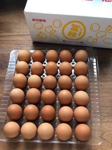 【とみたま】生卵60個セット