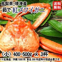 鳥取県 境港産 【 紅ズワイガニ 】(小 400-500gx3杯) 浜茹で直送 送料無料 宇和海の幸問屋