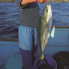 愛媛 佐田岬産 天然一本釣り 【 ブリ(鰤) 】 4-5kg ( 活き締め ) 送料無料 宇和海の幸問屋