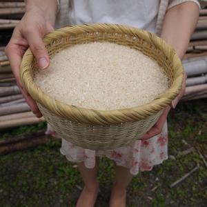 竹細工 竹製品 日本製 丸竹ざる 調理道具 篠竹細工 熟練の技 水切りざるに! 宮城の米とぎざる6番