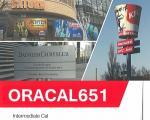 ORACAL651(屋外5〜6年耐候性/カーマーキング用途)