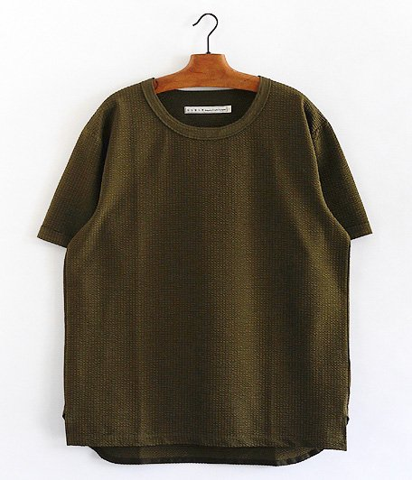 CURLY PROSPECT SS TEE [OLIVE]