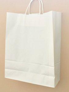 白無地の紙袋 1枚