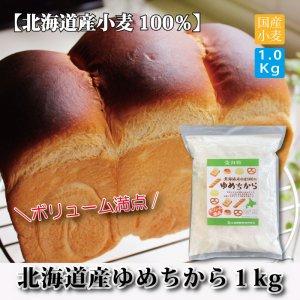 (北海道産)ゆめちからパン用強力粉1kg