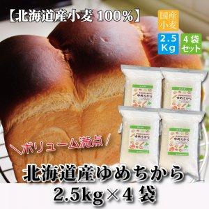 (北海道産)ゆめちからパン用強力粉2.5kg×4袋