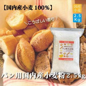 <img class='new_mark_img1' src='https://img.shop-pro.jp/img/new/icons25.gif' style='border:none;display:inline;margin:0px;padding:0px;width:auto;' />パン用 国内産小麦粉2.5kg