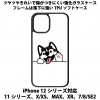送料無料 iPhone12シリーズ対応 背面強化ガラスケース 犬1