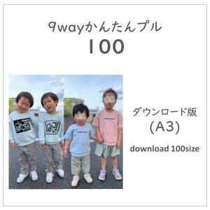 【ダウンロードA3版】かんたんプル 100 (download-100size)