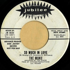 THE MUNX / So Much In Love [7INCH]