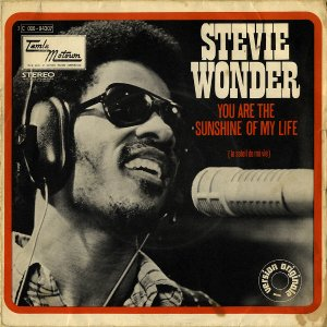 STEVIE WONDER / You Are The Sunshine Of My Life [7INCH]