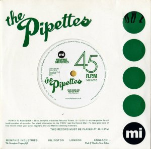 THE PIPETTES / Your Kisses Wasted On Me [7INCH]