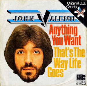 JOHN VALENTI / Anything You Want [7INCH]