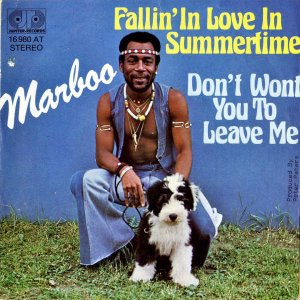MARBOO / Fallin' In Love In Summertime [7INCH]
