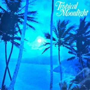 COMPILATION / Tropical Moonlight [LP]