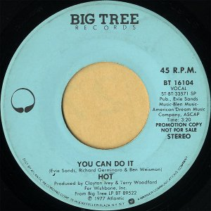 HOT / You Can Do It [7INCH]