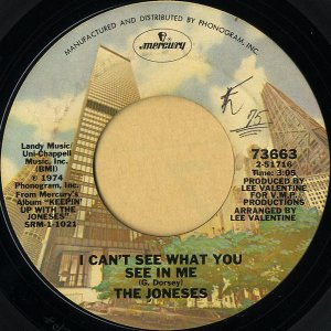 THE JONESES / I Can't See What You See In Me [7INCH]