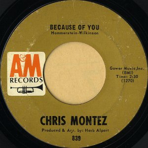 CHRIS MONTEZ / Because Of You [7INCH]