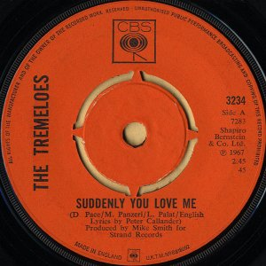 THE TREMELOES / Suddenly You Love Me [7INCH]