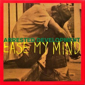 ARRESTED DEVELOPMENT / Ease My Mind [12INCH]