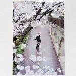 ナンバリング & 森田貴宏直筆サイン付きDVD付属 Cole Giordano (コール・ジオルダーノ)/ZINE (ジン)「Sakura」