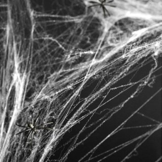 スパイダーウェブ ・クモの巣 ホワイト