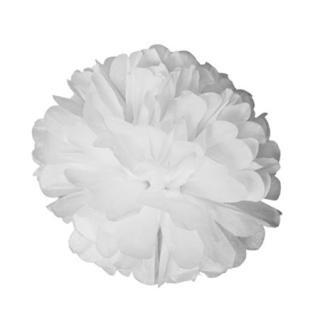 ペーパーポンポン 20cm / 30cm White