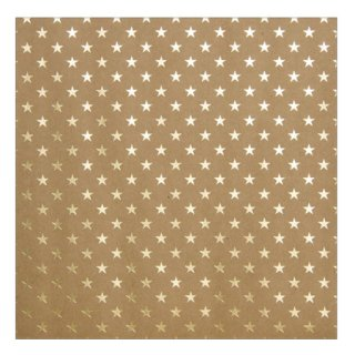 12インチペーパー | KRAFT WITH GOLD FOIL・STARS