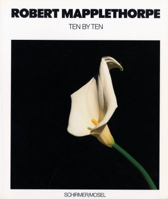 ROBERT MAPPLETHORPE / TEN BY TEN