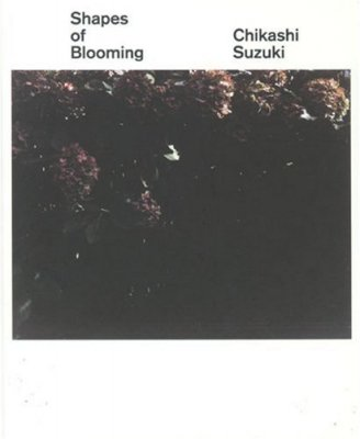 Shapes of Blooming / 鈴木親 Chikashi Suzuki