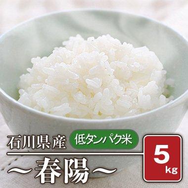 石川県産 「低タンパク米」 春陽(28年産) 5kg【白米】[通販商品]