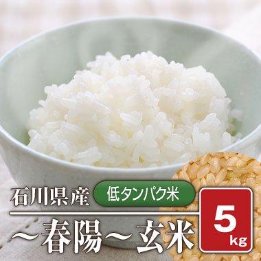 石川県産 「低タンパク米」 春陽(28年産) 5kg【玄米】[通販商品]