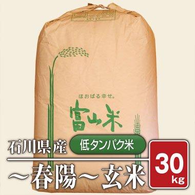 【送料無料】石川県産  「低タンパク米」 春陽(28年産) 30kg【玄米】[通販商品]
