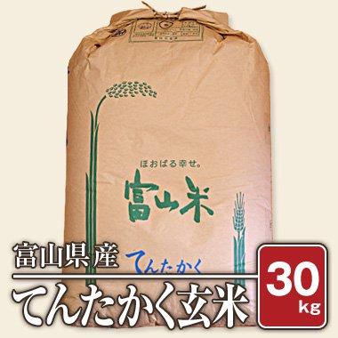 【送料無料】富山県産 てんたかく(28年産) 30kg【玄米】