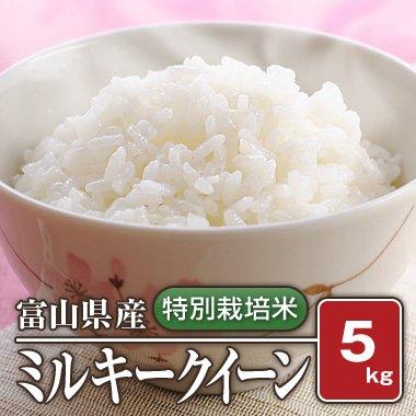 富山県産  特別栽培米 ミルキークイーン(28年産) 5kg【白米】[通販商品]