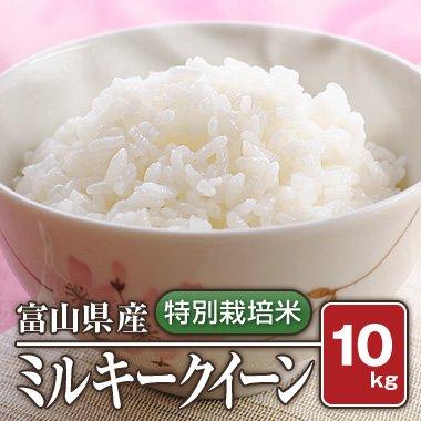 【送料無料】富山県産  特別栽培米 ミルキークィーン(29年産) 10kg【白米】[通販商品]