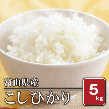 富山県産 こしひかり(28年産) 5kg【白米】[通販商品]