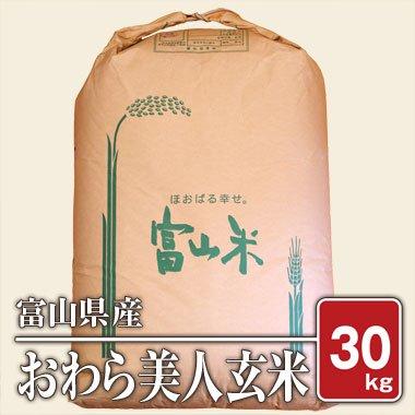 【送料無料】富山県産 幻の品種 おわら美人(28年産) 30kg【玄米】[通販商品]