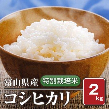 富山県産 特別栽培米コシヒカリ(29年産) 2kg【白米】[通販商品]