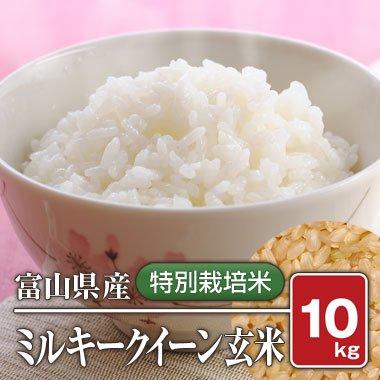 富山県産 特別栽培米  ミルキークイーン(29年産) 10kg【玄米】[通販商品]