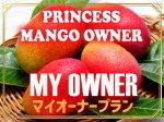 鉢植えマンゴーオーナー制【マイプラン】※2021年度予約注文受付分
