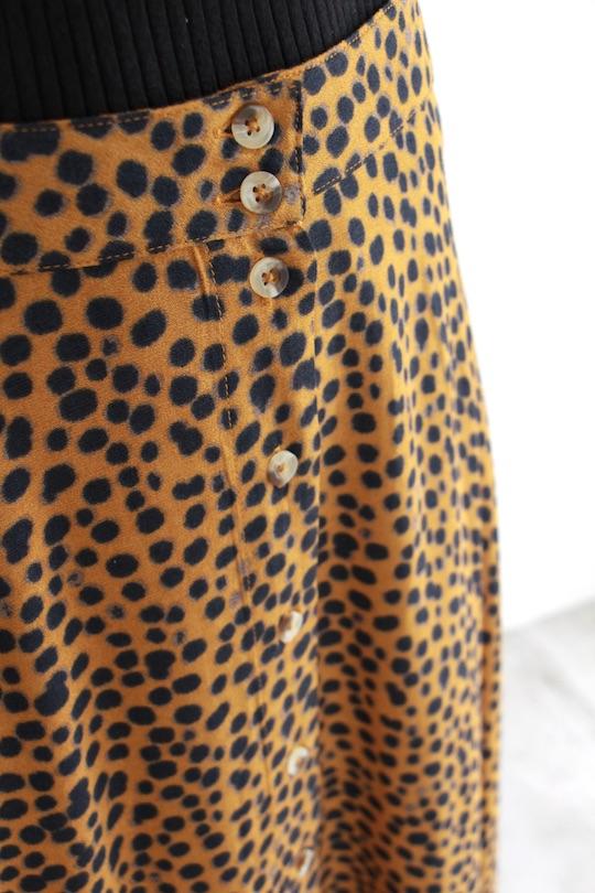 Leon&Harper leopard asymmetry SK