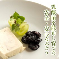 干しぶどう(ピオーネ50g×4パック)【肉厚で甘みの強い大粒干しぶどう】