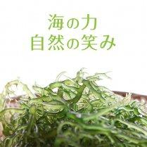 キリンサイ(生)1kg【高知でしか育たない栄養価抜群の海藻】